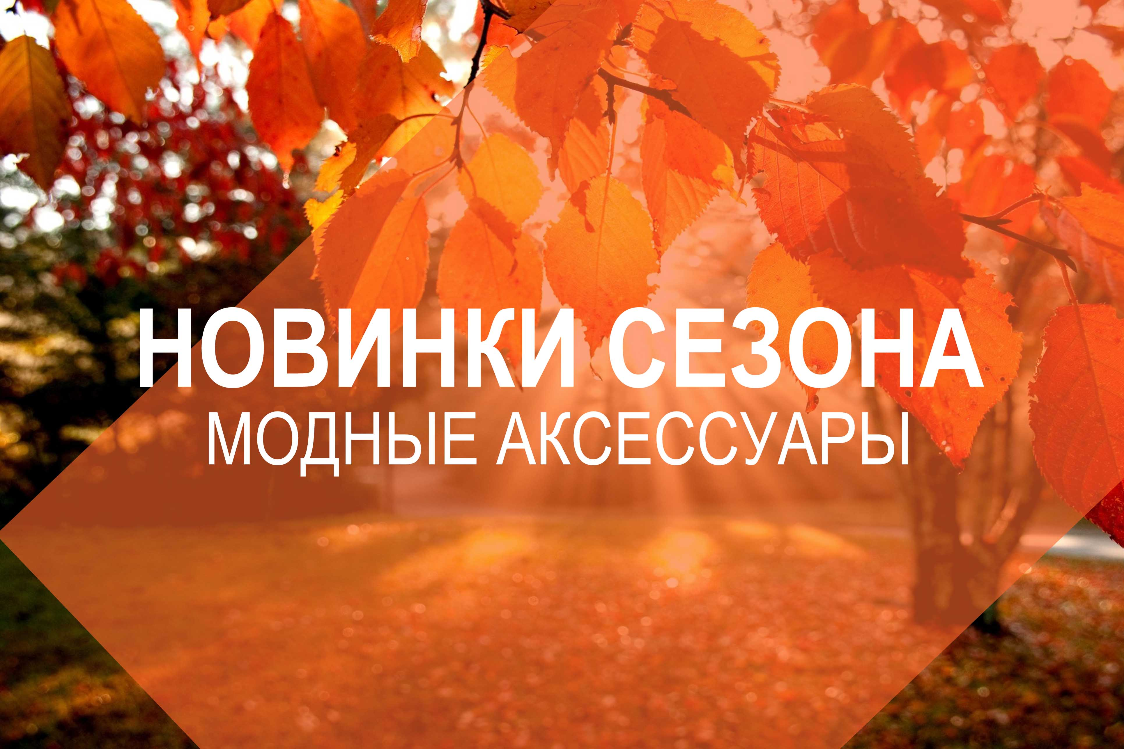 Новый сезон